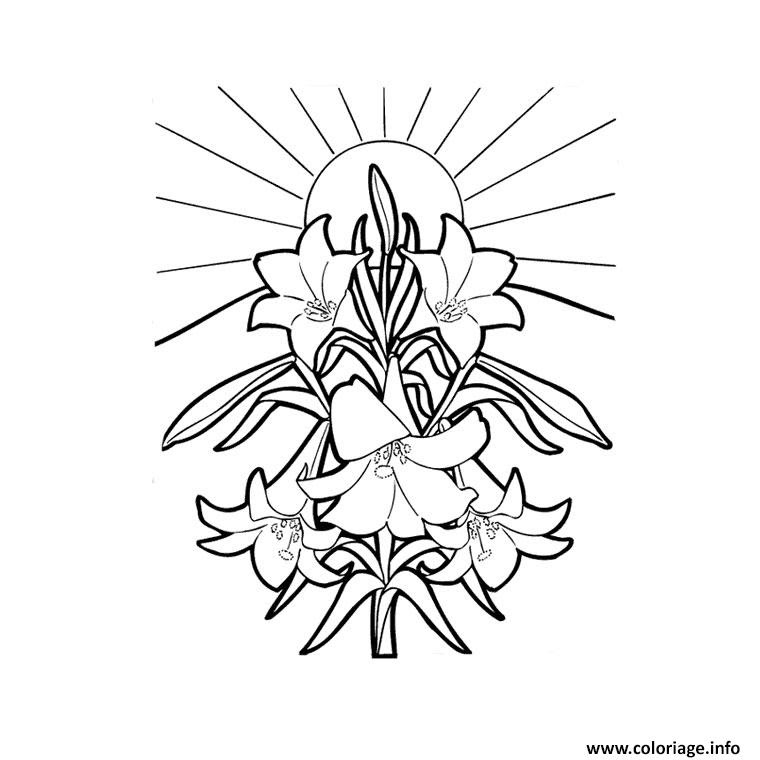 Vedkokevenblogspotcom Fleur Tropicale Dessin A Imprimer