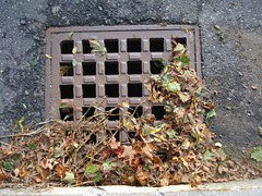 Franklin: Union St storm drain