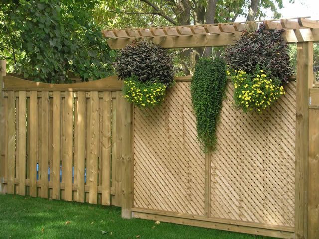 Backyard Privacy Ideas Lattice