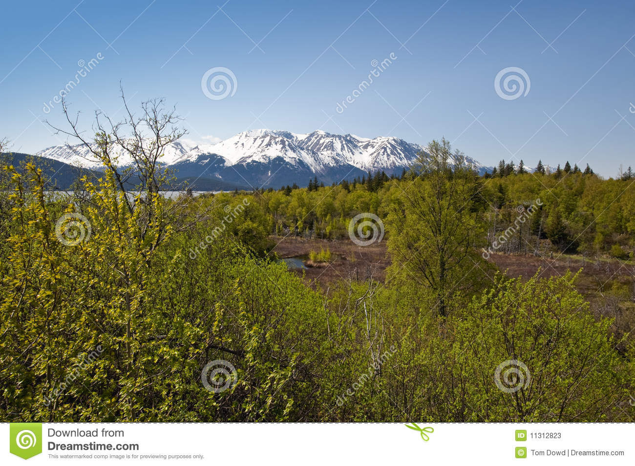 Scenic Alaskan wilderness and mountains near Turnagain Arm Fjord.