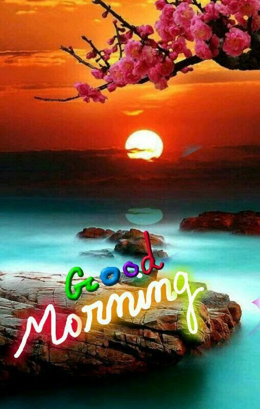 Beautiful Sun Good Morning Pictures Photos And Images For Facebook