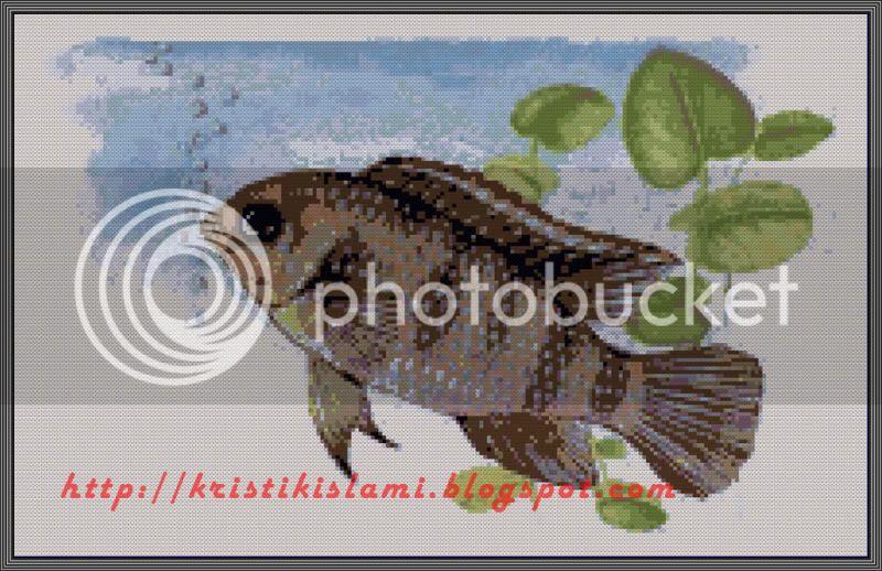 MAH008 Iwak Mujahir  - cross stitch fish design - click to view