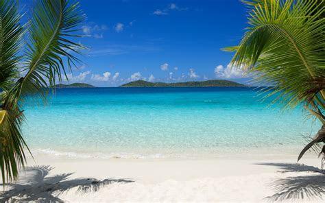 Download HD Tropical Island Beach Palm Trees Sea Waves