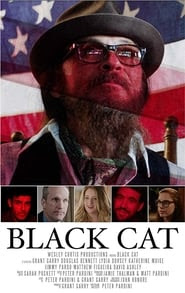 Black Cat Stream
