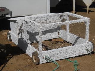 Painted Mini Chicken Tractor
