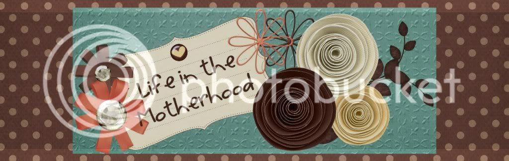 Life in the Motherhood
