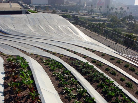 Clean Air Through Green Roofs Beautiful And Edible Green Roof