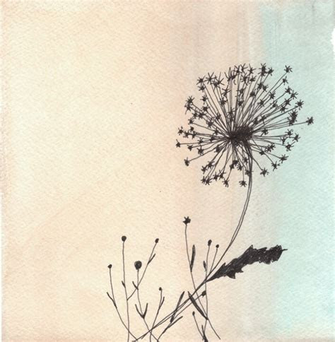 images  pretty drawings  pinterest