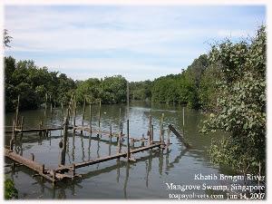 Khatib Bongsu River and swamp land, Singapore, Toa Payoh Vets