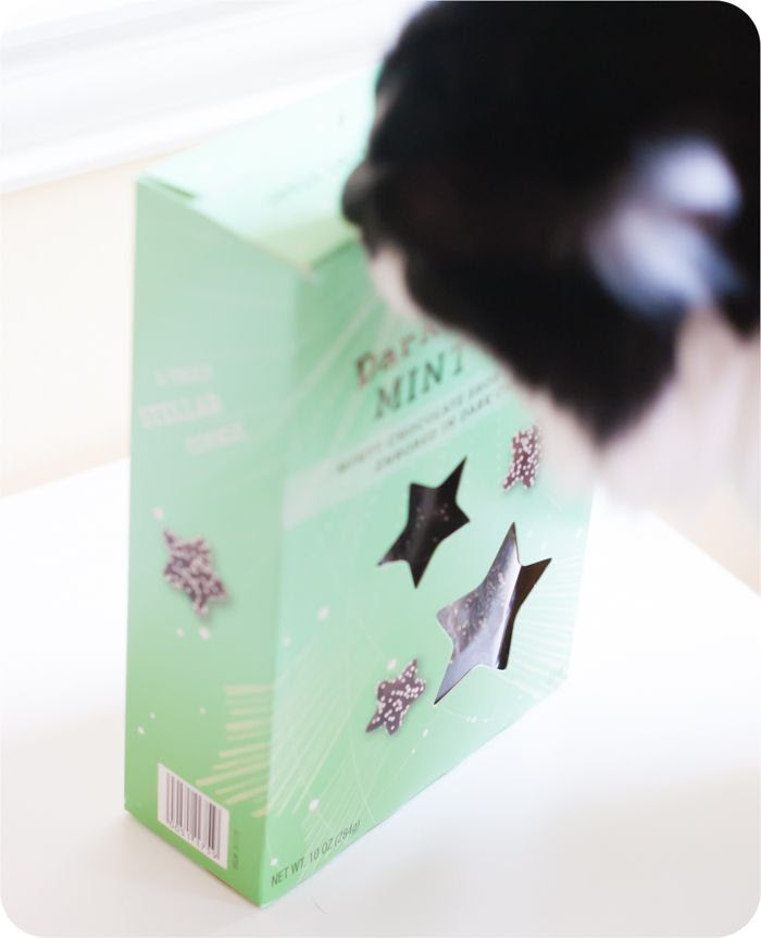 Trader Joe's Mini Dark Chocolate Mint Stars review ... a holiday item from TJ's