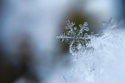 Вильфанд пообещал россиянам скачки температуры зимой