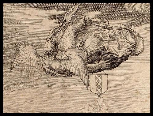 shot angel falling from sky