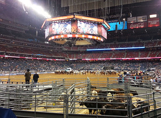Houston Livestock Show and Rodeo 2013