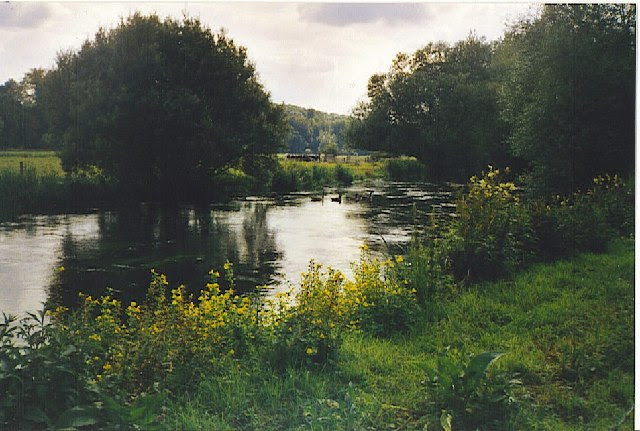 File:River Itchen - geograph.org.uk - 107948.jpg