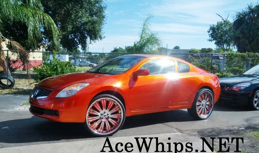 Ace 1 Wtw Broward Female S Candy Orange Nissan Altima