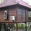 Kumpulan Gambar Rumah Kayu Minimalis Modern 2 Lantai