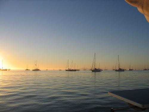 ha ha boats in the morning