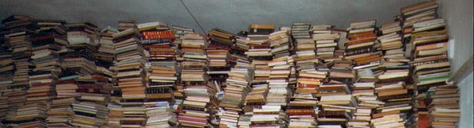 bibliotecasejemplares