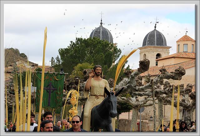 6 Domingo de Ramos en Briviesca