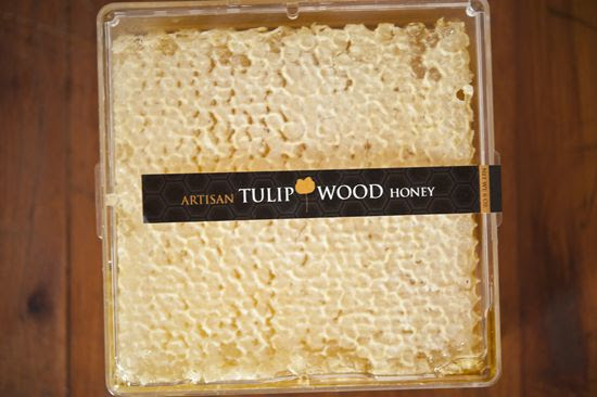 tulipwood honey comb photo DSC_8834.jpg