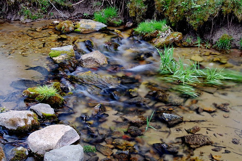 Slow Shot of a Fast Creek