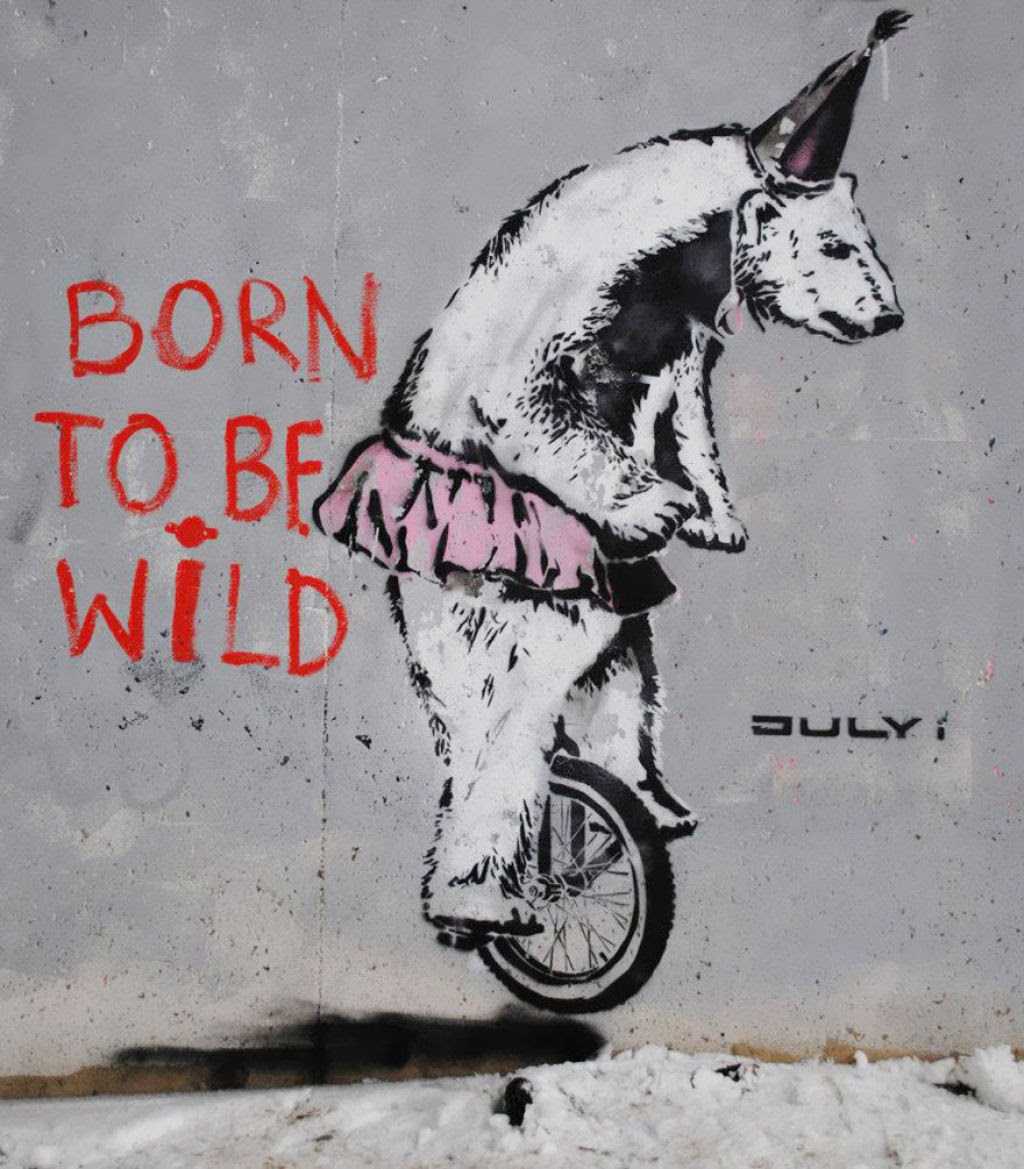 24 eloquentes obras de arte urbana mostrando a desagradável verdade 09