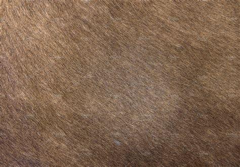 Horse skin hair Texture ~ Textures ~ Creative Market