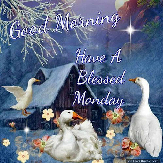 Good Morning Have A Blessed Monday Image Quote Pictures Photos And