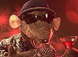 He's back Rat fans