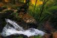 Top of Ganoga Falls, Ricketts Glen State Park