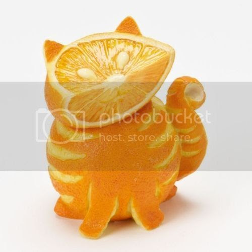 Orange cat.  I mean, really orange.