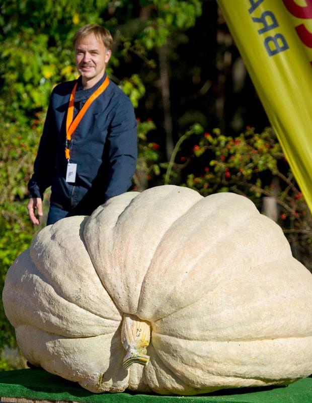 Fazendeiro posa ao lado da abóbora vencedora, de 672 quilos. (Foto: Patrick Pleul/AFP)