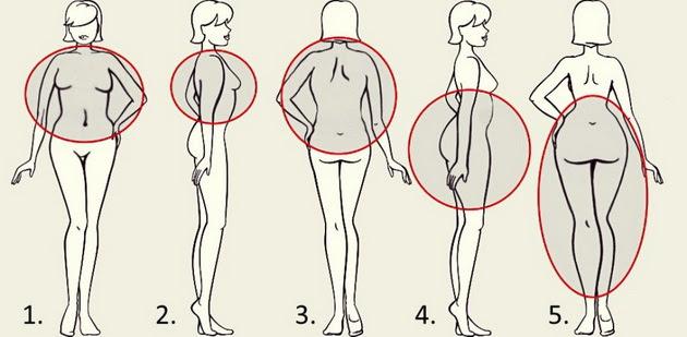 Resultat d'imatges de grasa en el cuerpo