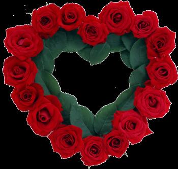 розы и листья