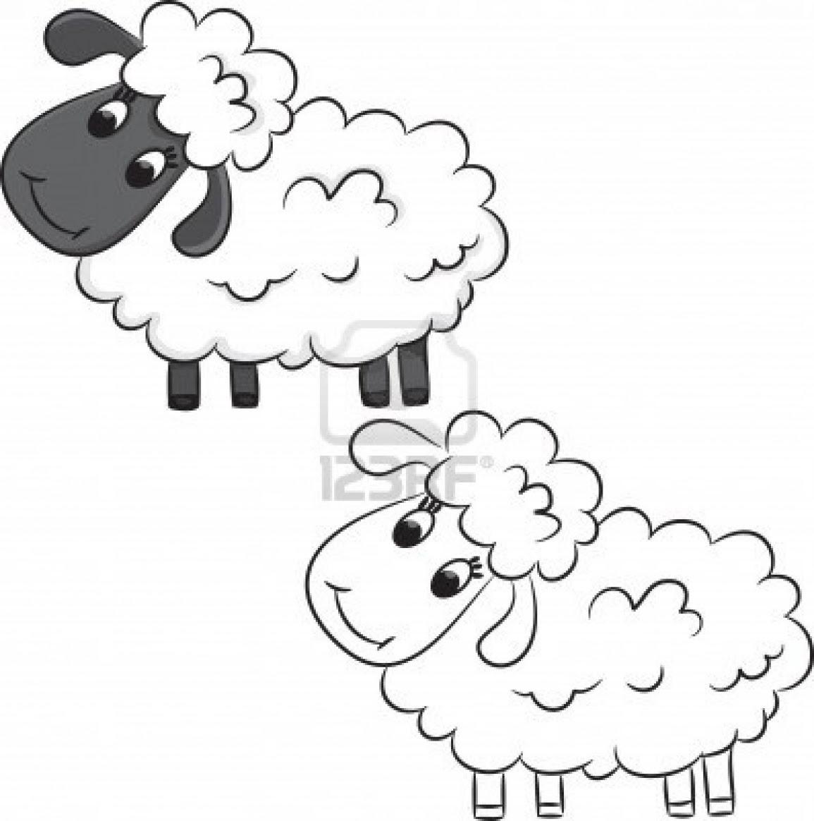 Koyun Boyama Kitabı Resimleri Ve Fotoğrafları
