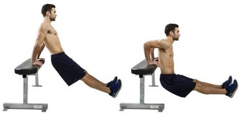 biceps workouts     home super trainer