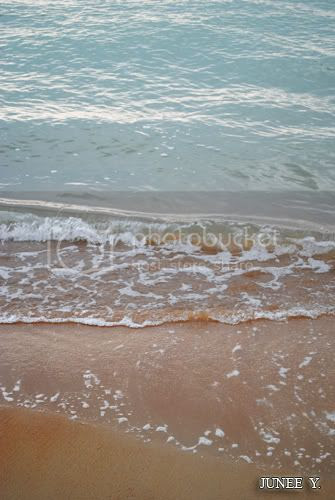 http://i599.photobucket.com/albums/tt74/yjunee/blogger/DSC_0060.jpg?t=1259688543
