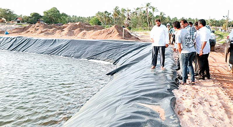 Primary Industries Minister Daya Gamage during his inspection tour at Ambakandawila in Chilaw.