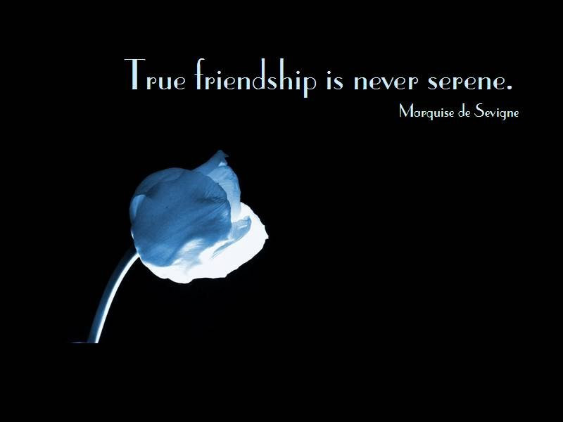Cute Short Quotes About Friendship Hd Wallpapers