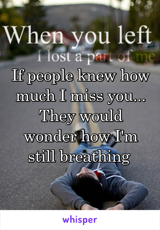If People Knew How Much I Miss You They Would Wonder How Im