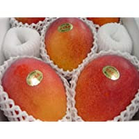 沖縄県産 濃厚完熟アップルマンゴー訳あり家庭用1kg