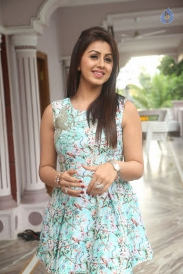 Nikki Galrani Latest Photos - 35 of 35