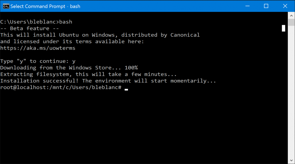 bash_windows10