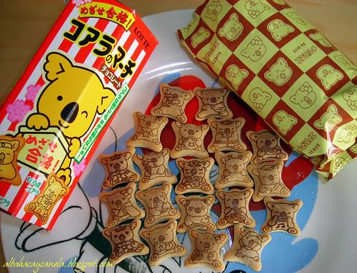 Koala japanese cookies