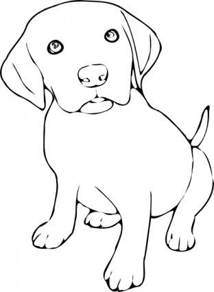 1000 Gambar Anjing Hitam Putih