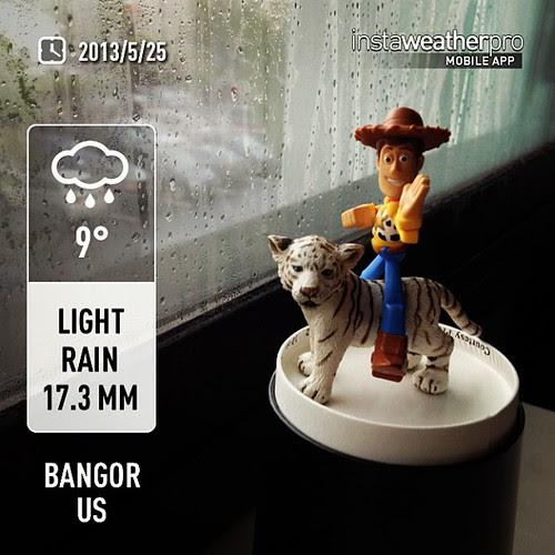 Good morning. Rain.OMG...9℃!! Day_068