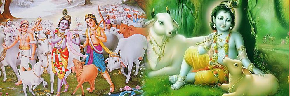 Tempo Traveller for Mathura Vrindavan, Mathura Vrindavan tour