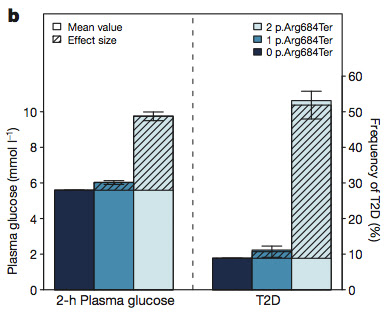 Functional impact of T2D variant