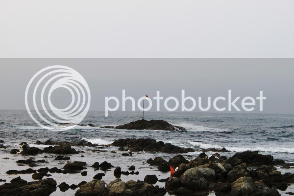 photo IMG_2967-edit.jpg