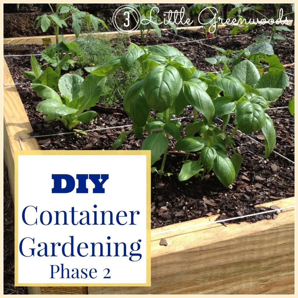 DIY Container Garden: Planning & Planting {3littlegreenwoods.com}